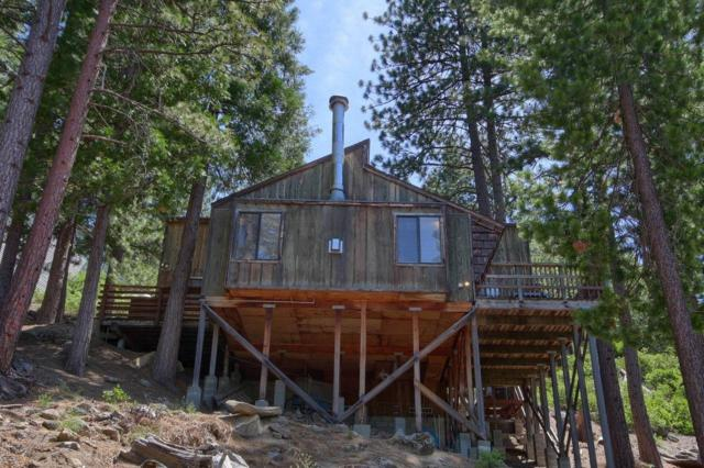 7497 Yosemite Park Way, Yosemite West, CA 95389 (#526310) :: Raymer Realty Group