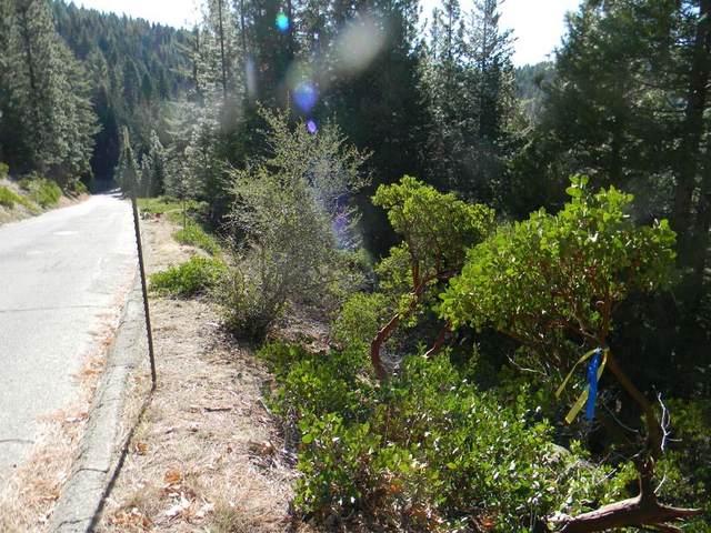 7483 Yosemite Park Way, Yosemite West, CA 95389 (#544017) :: Twiss Realty