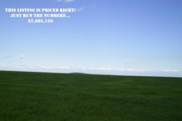 14-Parcel Ca Hwy 46, Lost Hills, CA 93249 (#470141) :: FresYes Realty