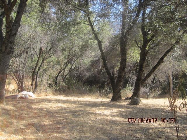 0 Address Not Published, Oakhurst, CA 93644 (#490062) :: Raymer Team Real Estate