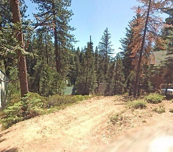 42028 Foxtail Lane, Shaver Lake, CA 93664 (#497474) :: Raymer Realty Group