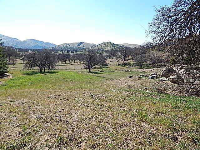 0 Mary Rebecca Lane, Friant, CA 93626 (#497714) :: Raymer Realty Group