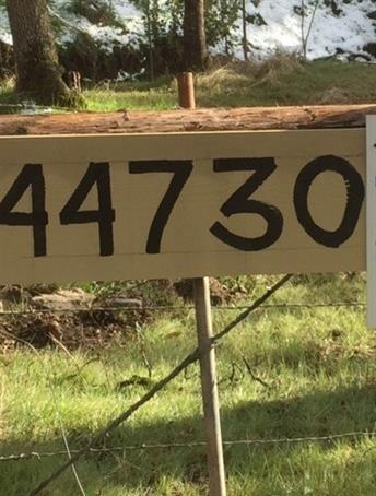 44730 619 Road, Ahwahnee, CA 93601 (#498721) :: FresYes Realty