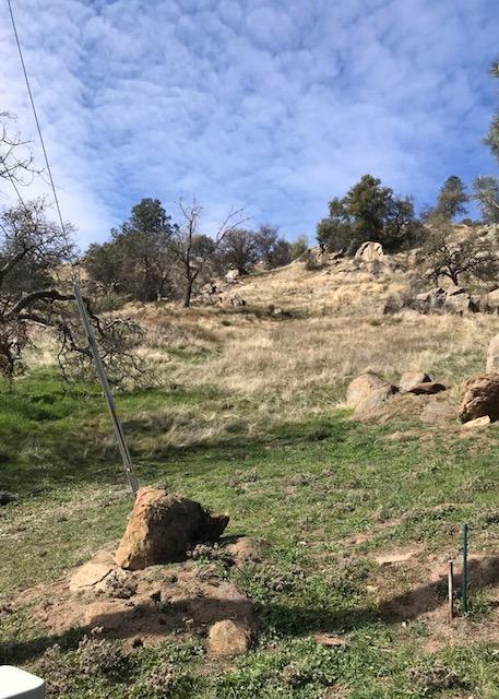 0 Ranger Circle Drive, Coarsegold, CA 93614 (#499218) :: FresYes Realty