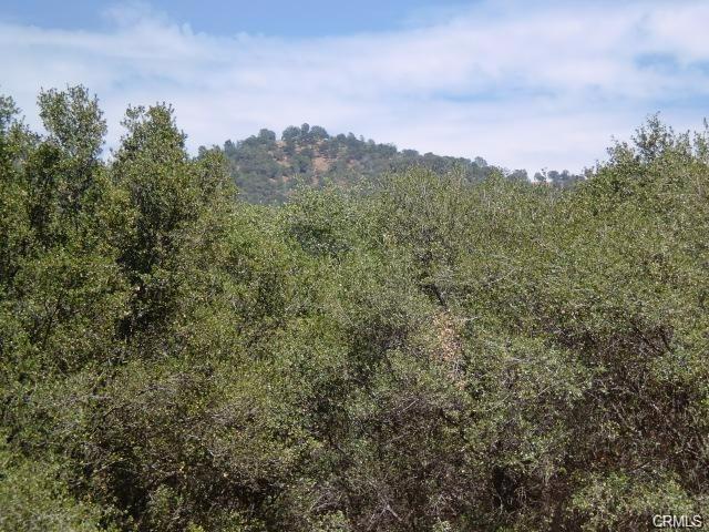 0 Apache Ranch Road, Ahwahnee, CA 93601 (#503190) :: FresYes Realty