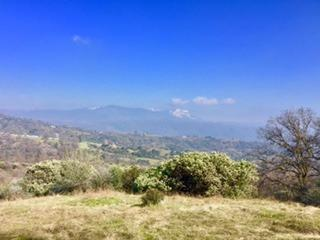 0-Lot 15 Dunlap Road, Miramonte, CA 93641 (#504670) :: FresYes Realty