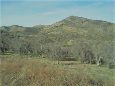 0-0 Big Springs Road, Tollhouse, CA 93667 (#504908) :: FresYes Realty