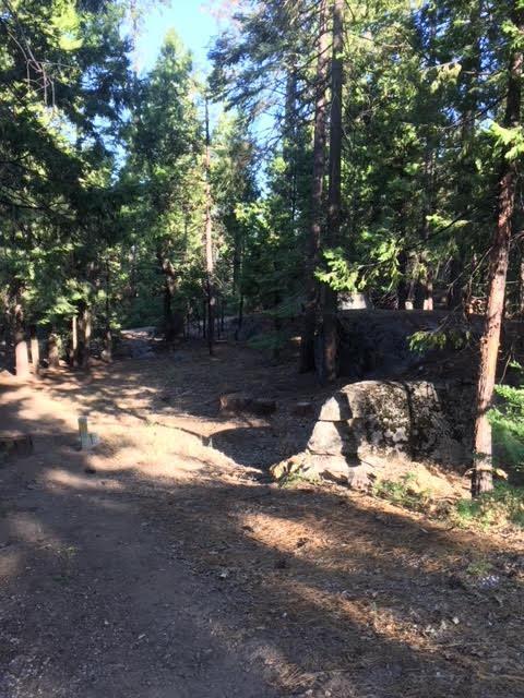 40757 Silvertip, Shaver Lake, CA 93664 (#506032) :: FresYes Realty