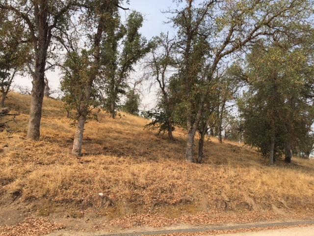 14675 Blue Oak Lane, Prather, CA 93651 (#506605) :: Soledad Hernandez Group