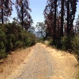0 Rocky Springs Road, Auberry, CA 93602 (#512206) :: FresYes Realty