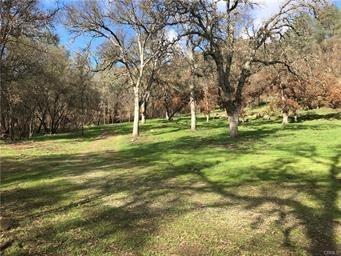 3811 Guadalupe Creek Road, Mariposa, CA 95338 (#515785) :: Soledad Hernandez Group