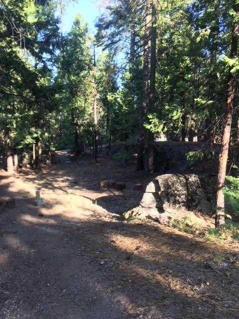 40757 Silvertip, Shaver Lake, CA 93664 (#516116) :: Raymer Realty Group