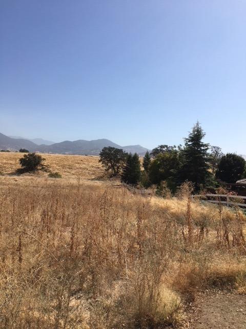 22304 Mariposa Road, Tehachapi, CA 93561 (#517024) :: FresYes Realty