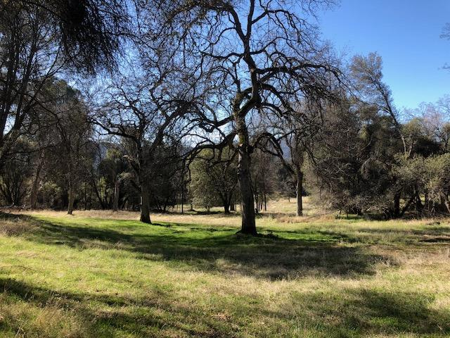 3-Acres John West Rd, Oakhurst, CA 93644 (#521841) :: FresYes Realty