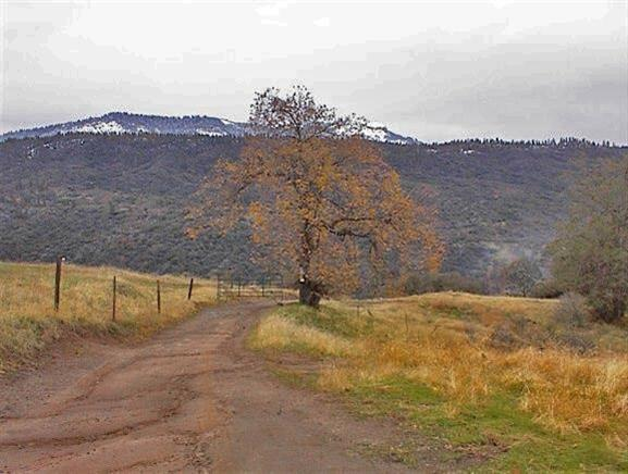 0 Hogback Road, Pinehurst, CA 93641 (#524900) :: FresYes Realty