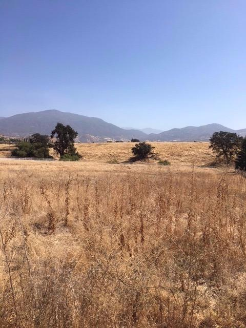 0 Mill Drive, Springville, CA 93257 (#526075) :: Raymer Realty Group