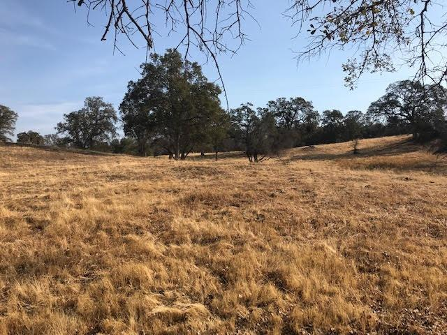28733-43 Auberry Road, Prather, CA 93651 (#526439) :: Raymer Realty Group