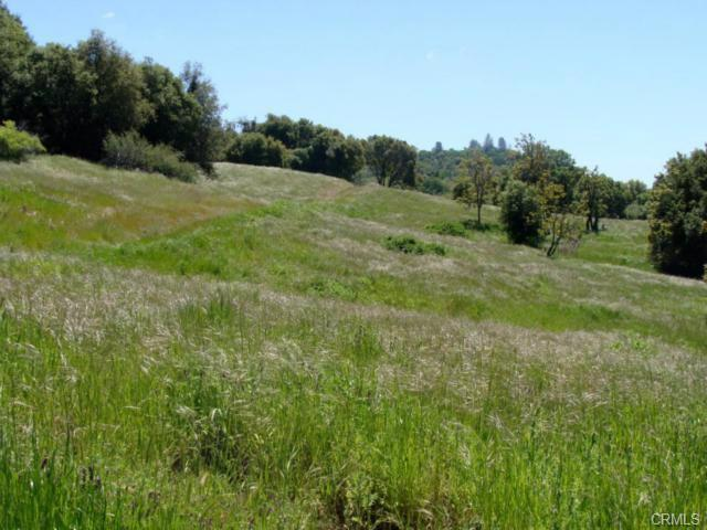 0 Address Not Published, Mariposa, CA 95338 (#528655) :: Raymer Realty Group