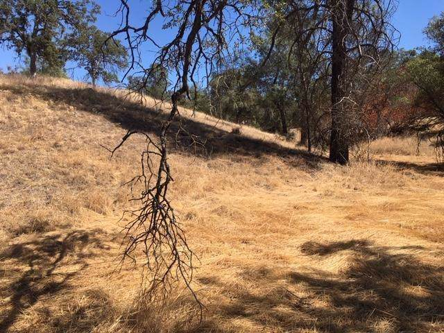 0 Address Not Published, Coarsegold, CA 93614 (#530731) :: Raymer Realty Group