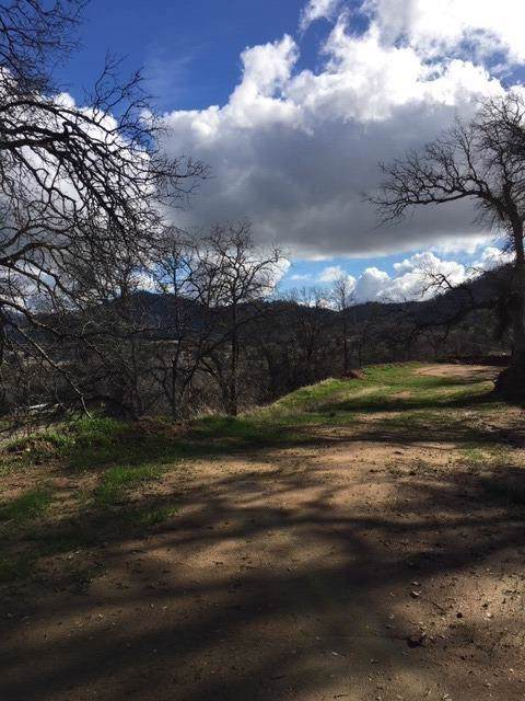 28373 Burrough Valley Road, Tollhouse, CA 93667 (#533569) :: FresYes Realty