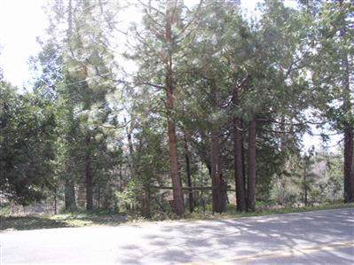 0 Badger Lot 27, Pinehurst, CA 93641 (#534697) :: Dehlan Group