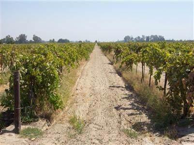 1675 E Sumner Avenue, Fresno, CA 93725 (#535469) :: Your Fresno Realty | RE/MAX Gold