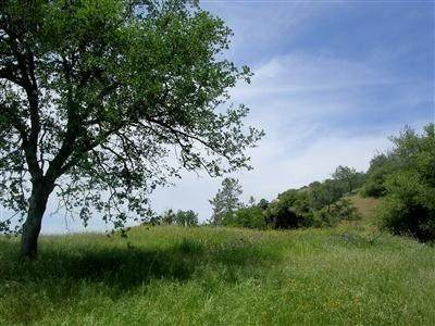 62 Aunt Julia Lane Lot C, Auberry, CA 93602 (#537205) :: Your Fresno Realty | RE/MAX Gold