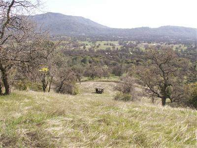 63 Aunt Julia Lane Lot D, Auberry, CA 93602 (#537206) :: Your Fresno Realty | RE/MAX Gold