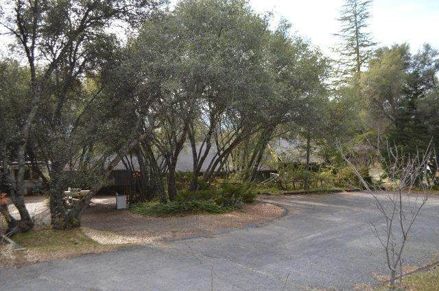 40750 Highway 49, Oakhurst, CA 93644 (#537488) :: Raymer Realty Group