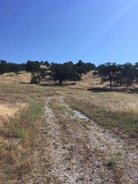 0 Road 415, Coarsegold, CA 93614 (#539943) :: Dehlan Group