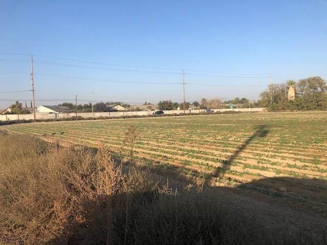 317 W Jensen Avenue, Fresno, CA 93706 (#543893) :: FresYes Realty