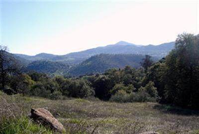 0 Bryson Ln. Parcel #4, Squaw Valley, CA 93675 (#543961) :: FresYes Realty