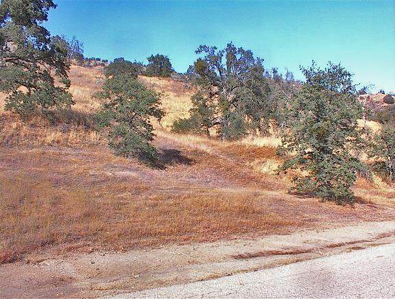 0 Squaw Valley Road, Squaw Valley, CA 93675 (#543966) :: FresYes Realty