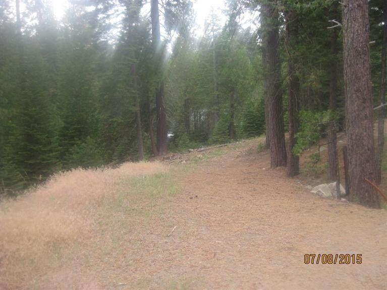 39939 Mountain Heather Road - Photo 1