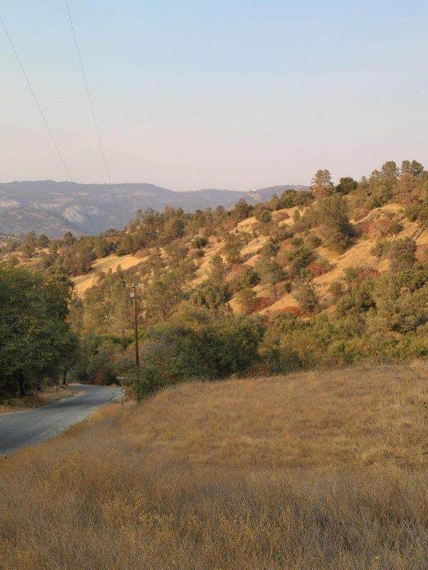 28617 Kimberly Road - Photo 1