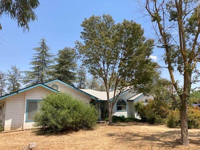 18293 Briargate Road, Madera, CA 93638 (#561471) :: Raymer Realty Group