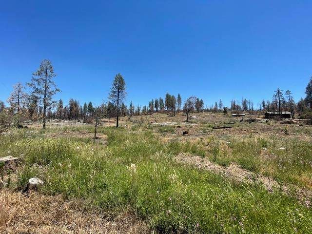 0 Pinecone Lane, Auberry, CA 93602 (#562366) :: Raymer Realty Group