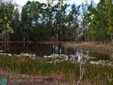 6801 Duckweed Road - Photo 4