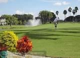 4301 Martinique Cir - Photo 26