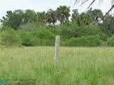 1200 Pine Island - Photo 2
