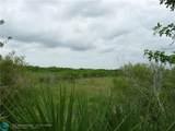 1200 Pine Island - Photo 4