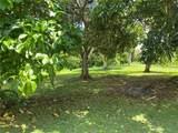 1 Upton Ocho Rios - Photo 1
