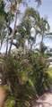 4641 Bougainvilla Dr - Photo 63