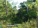 22370 Hammock River Way - Photo 18