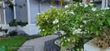7511 Black Olive Way - Photo 85