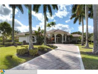 1424 NW 127th Way, Coral Springs, FL 33071 (MLS #F10047455) :: Green Realty Properties