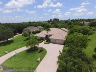 11636 NW 5th St, Plantation, FL 33325 (MLS #F10069798) :: Green Realty Properties
