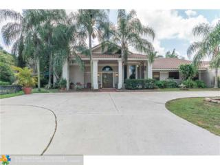 8800 NW 72ND ST, Parkland, FL 33067 (MLS #F1314354) :: Green Realty Properties