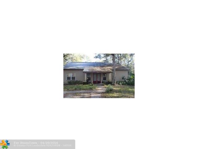 8142 B.W. Stevenson Road, Other City - In The State Of Florida, FL 34613 (MLS #F10007726) :: Green Realty Properties