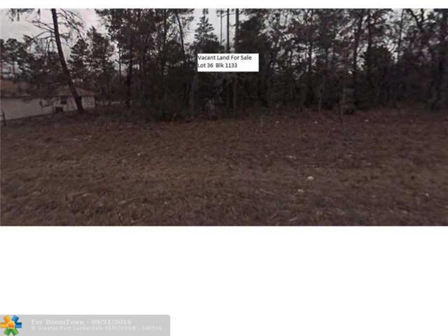 Undetermined Ocala, Other City - In The State Of Florida, FL 34473 (MLS #F10031960) :: Green Realty Properties
